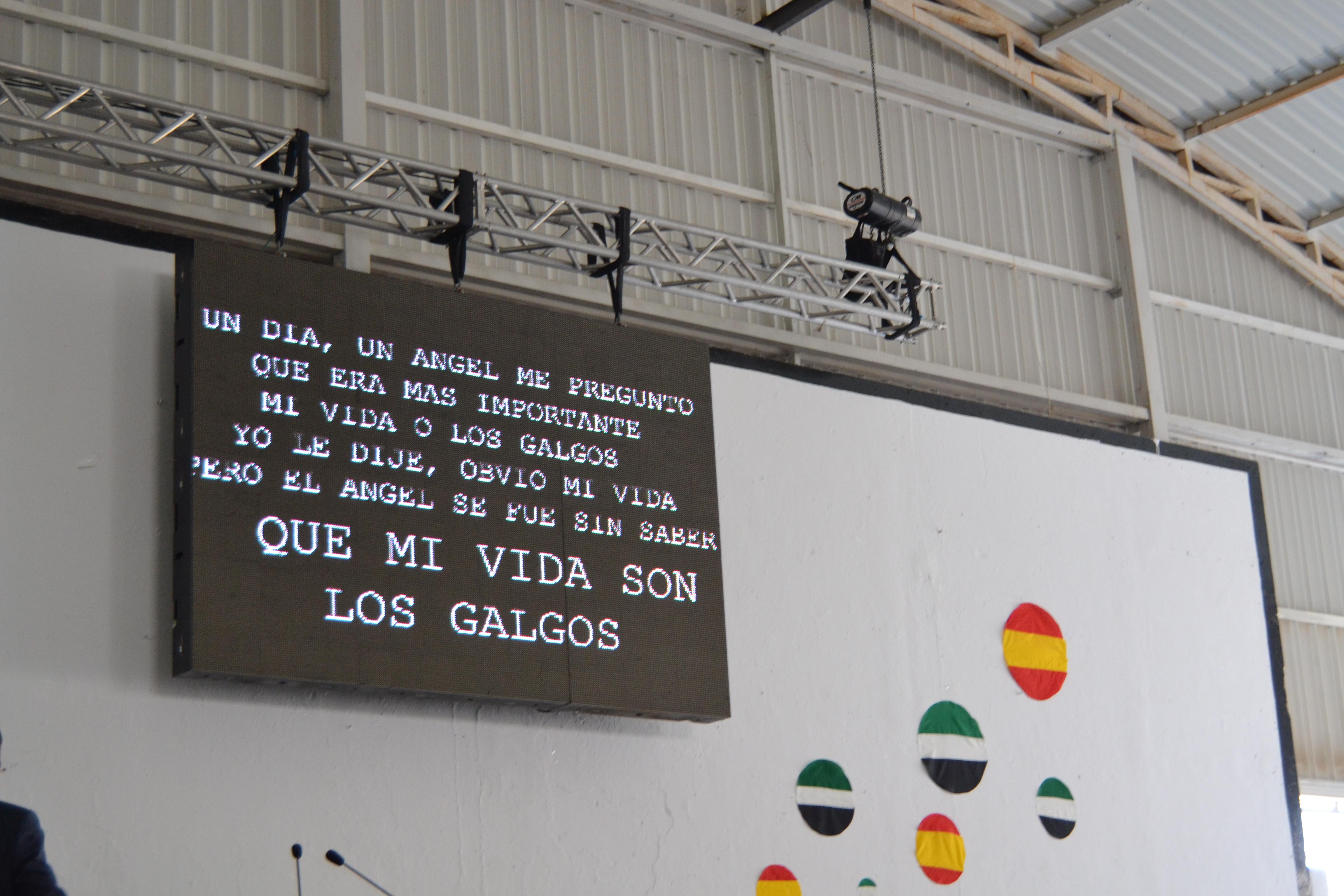 V FERIA INTENACIONAL DEL GALGO Y XXVII CAMPEONATO NACIONAL